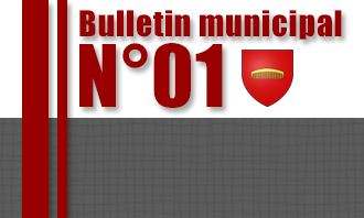 Bulletin d'informations municipales N° 01