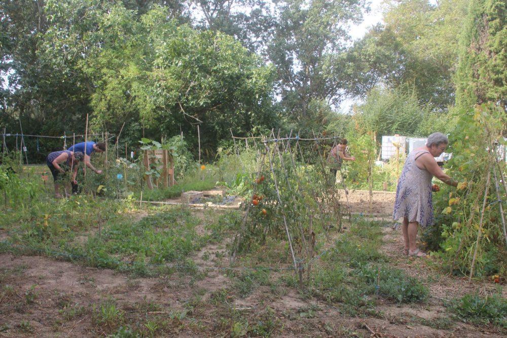 les-jardins-du-fresquel-18-09-19-001